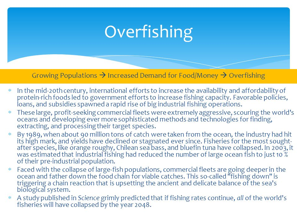 Overfishing Growing Populations  Increased Demand for Food/Money  Overfishing  In the mid-20th century, international efforts to increase the availability and affordability of protein-rich foods led to government efforts to increase fishing capacity.