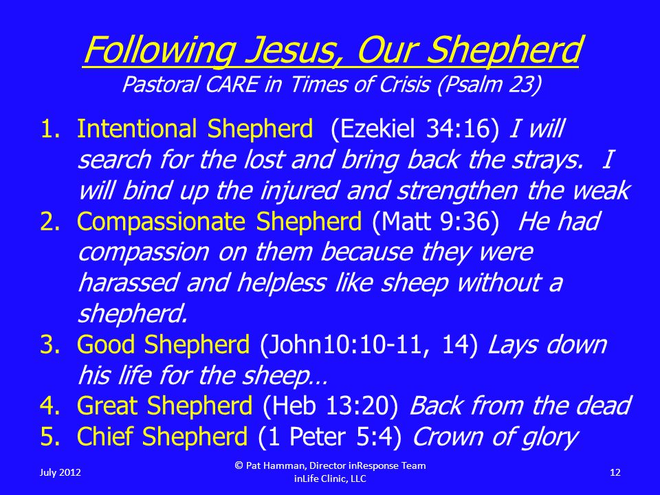 Following Jesus, Our Shepherd Pastoral CARE in Times of Crisis (Psalm 23) 1.Intentional Shepherd (Ezekiel 34:16) I will search for the lost and bring back the strays.