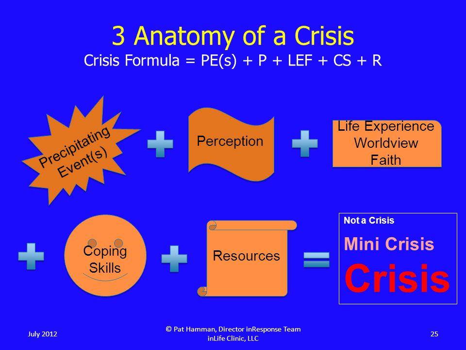 July 2012 © Pat Hamman, Director inResponse Team inLife Clinic, LLC 25 Precipitating Event(s) Perception Life Experience Worldview Faith Coping Skills