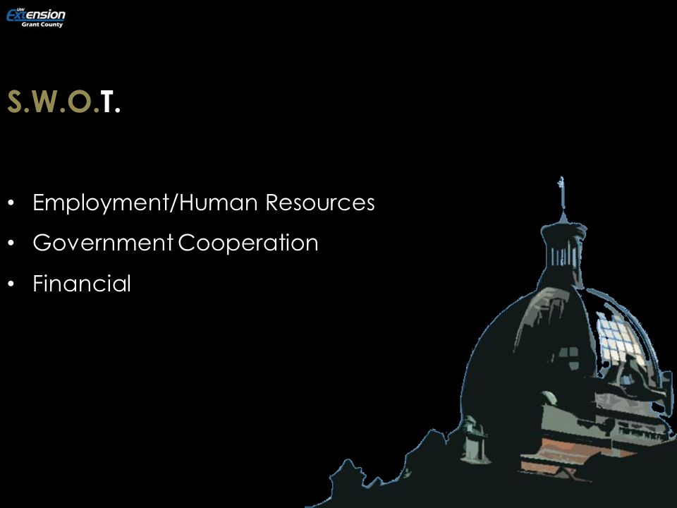 S.W.O.T. Employment/Human Resources Government Cooperation Financial