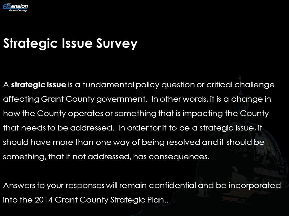Strategic Issue Survey.