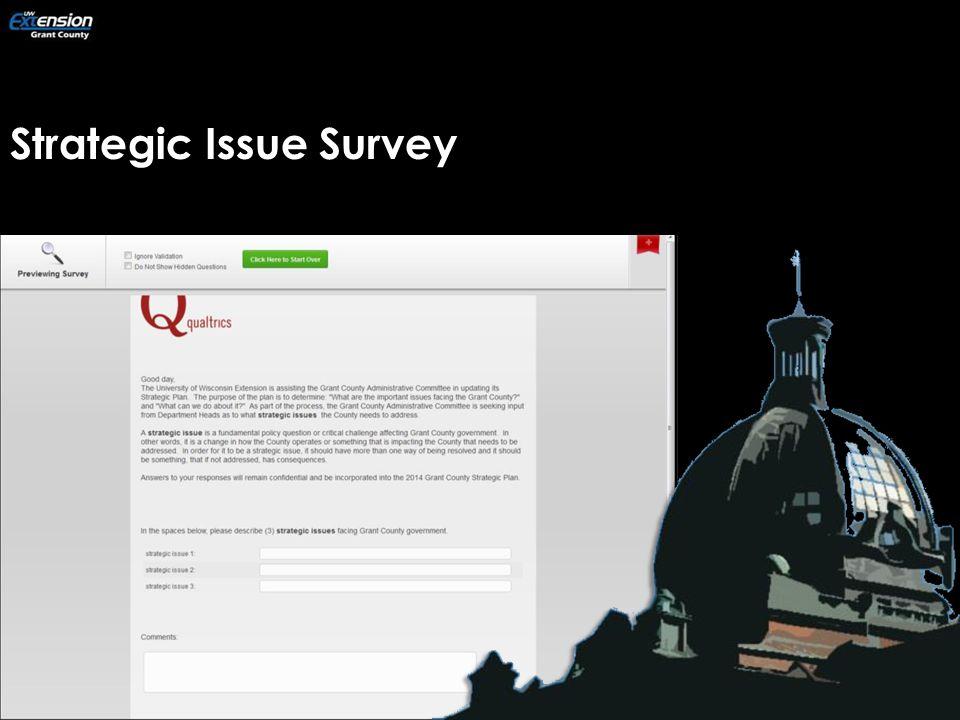 Strategic Issue Survey