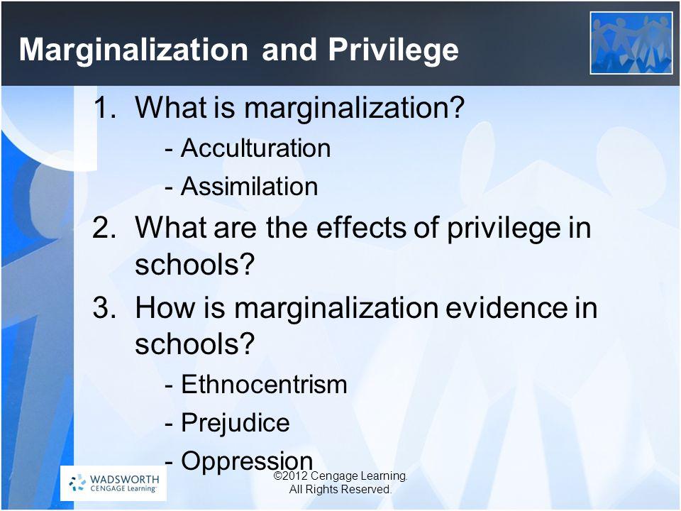 Marginalization and Privilege 1.What is marginalization.