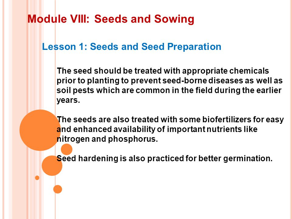 Module VIII: Seeds and Sowing Lesson 1: Seeds and Seed Preparation The seed should be treated with appropriate chemicals prior to planting to prevent seed-borne diseases as well as soil pests which are common in the field during the earlier years.