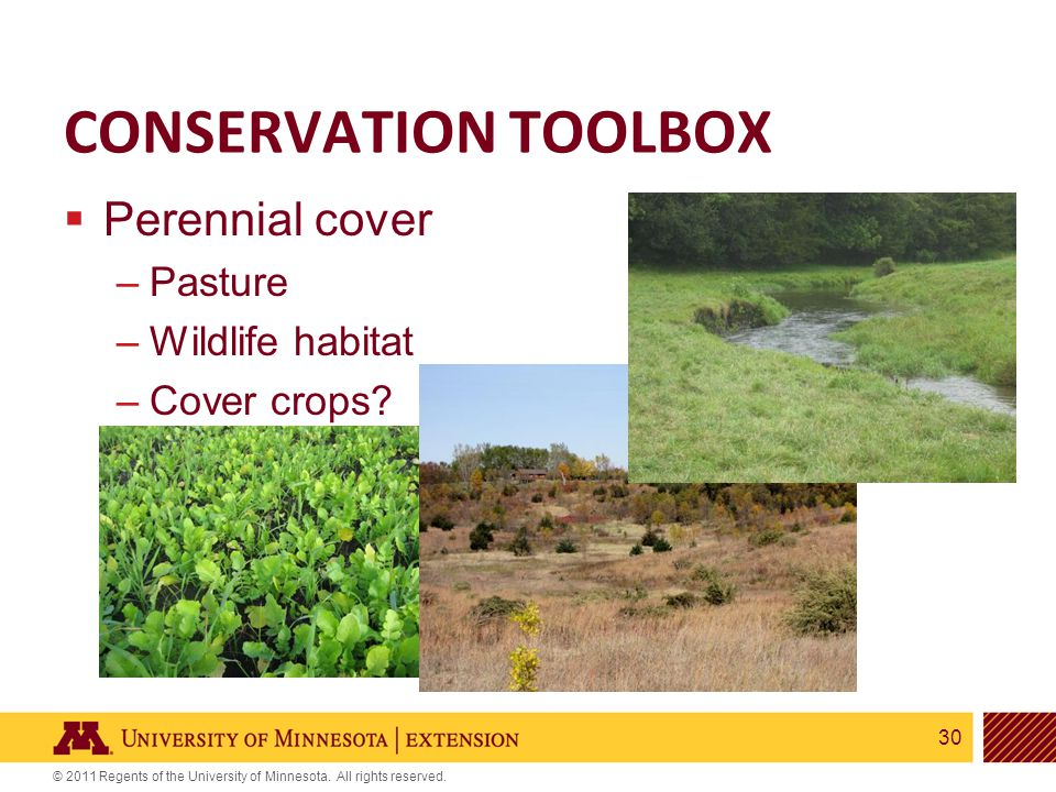 30 © 2011 Regents of the University of Minnesota. All rights reserved. CONSERVATION TOOLBOX  Perennial cover –Pasture –Wildlife habitat –Cover crops?