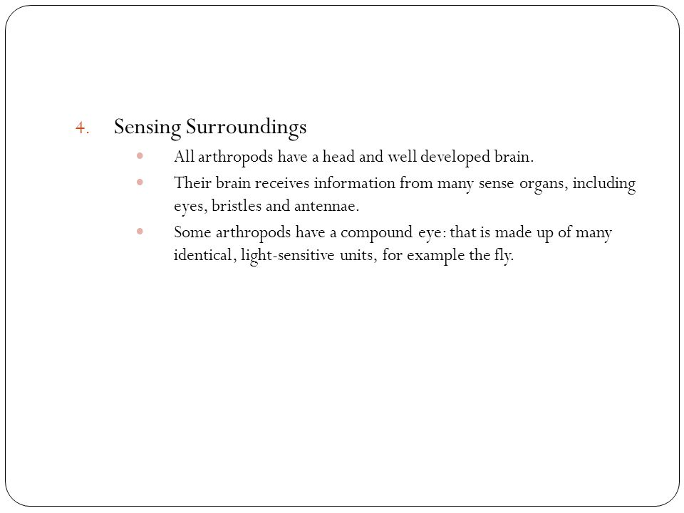 4. Sensing Surroundings All arthropods have a head and well developed brain. Their brain receives information from many sense organs, including eyes,