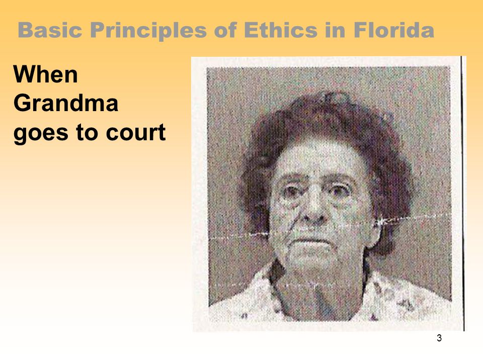 Basic Principles of Ethics in Florida When Grandma goes to court 3