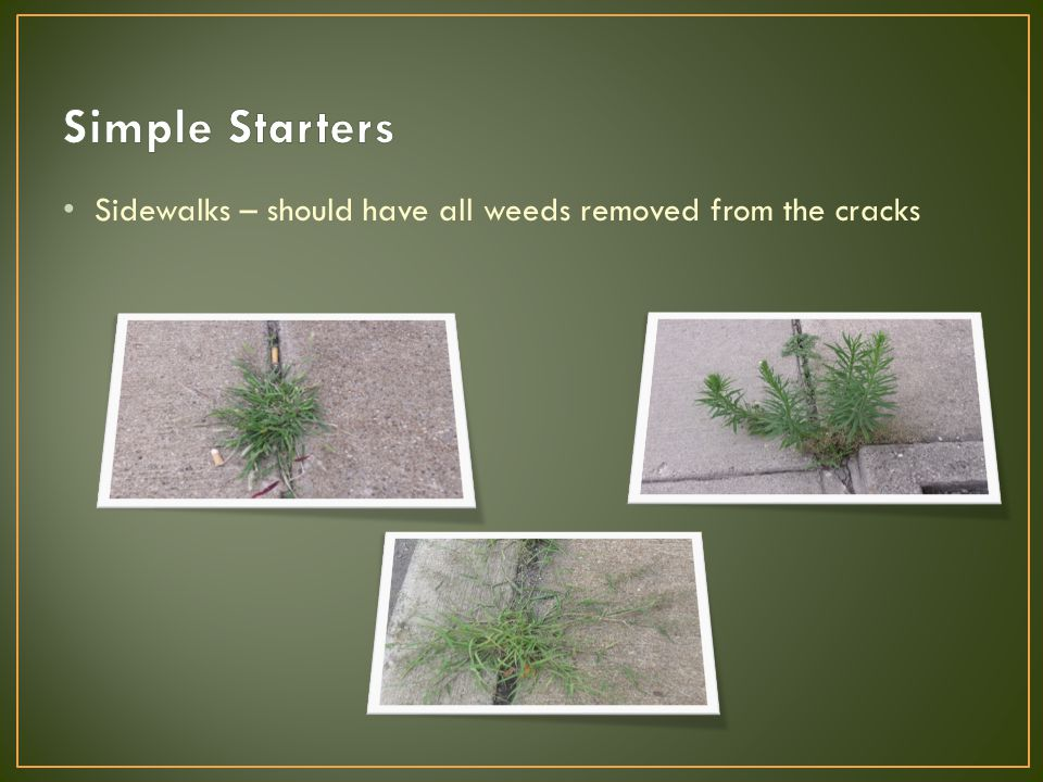 Sidewalks – should have all weeds removed from the cracks