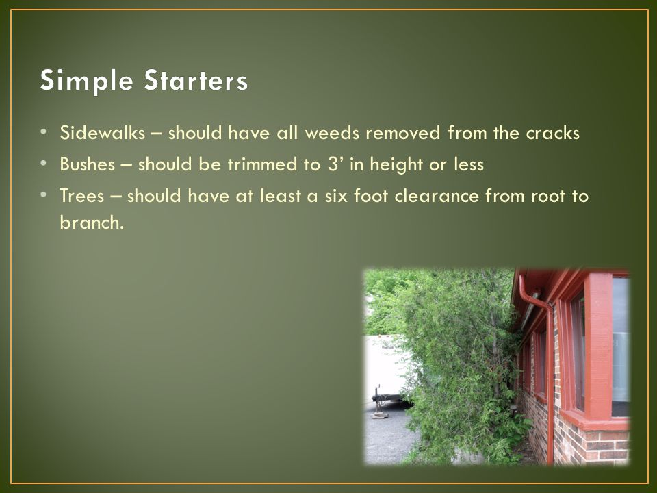 Sidewalks – should have all weeds removed from the cracks Bushes – should be trimmed to 3' in height or less Trees – should have at least a six foot c