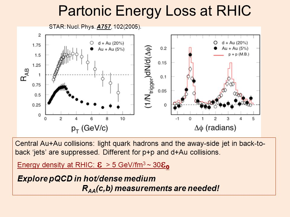 Partonic Energy Loss at RHIC Central Au+Au collisions: light quark hadrons and the away-side jet in back-to- back 'jets' are suppressed.
