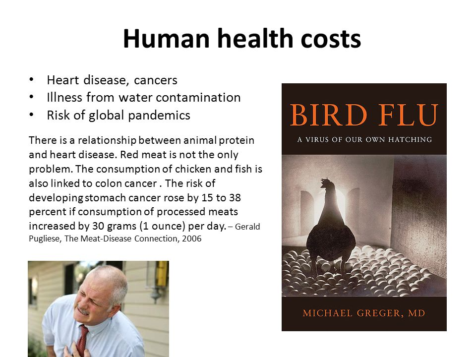 Human health costs Heart disease, cancers Illness from water contamination Risk of global pandemics There is a relationship between animal protein and heart disease.