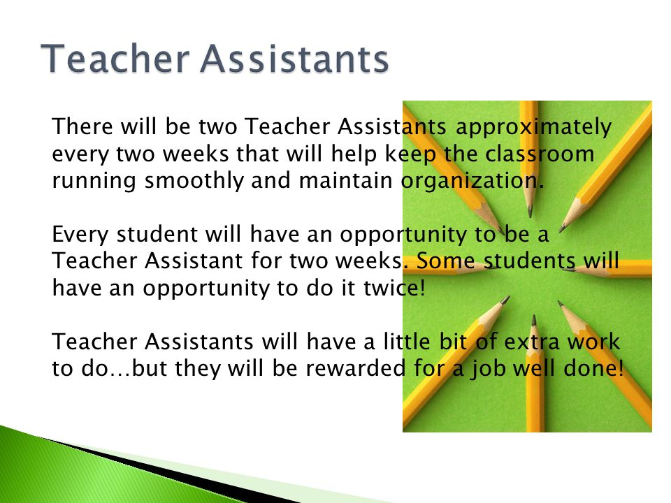 There will be two Teacher Assistants approximately every two weeks that will help keep the classroom running smoothly and maintain organization.