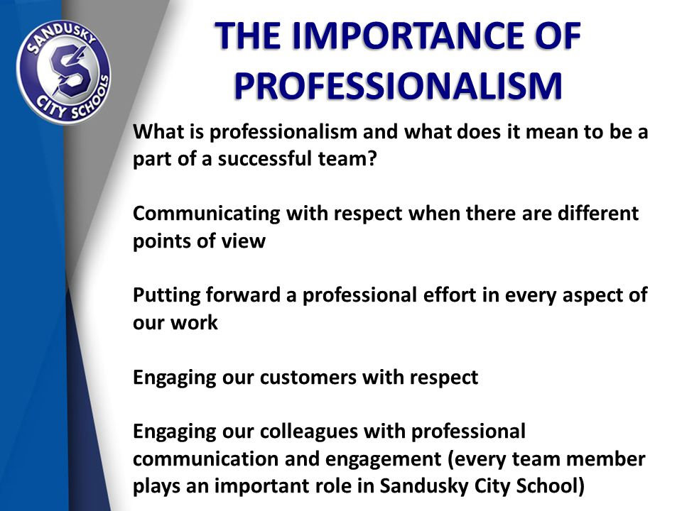 THE IMPORTANCE OF PROFESSIONALISM What is professionalism and what does it mean to be a part of a successful team.