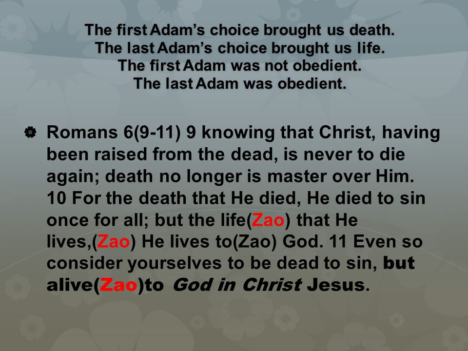 The first Adam's choice brought us death. The last Adam's choice brought us life. The first Adam was not obedient. The last Adam was obedient.   Rom