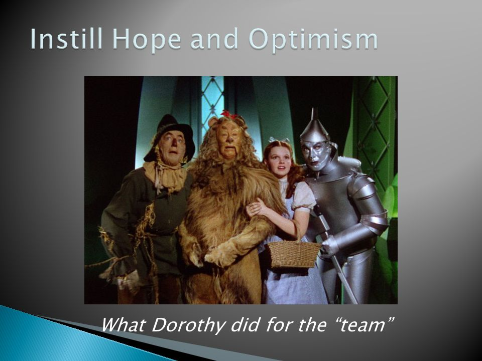 "What Dorothy did for the ""team"""