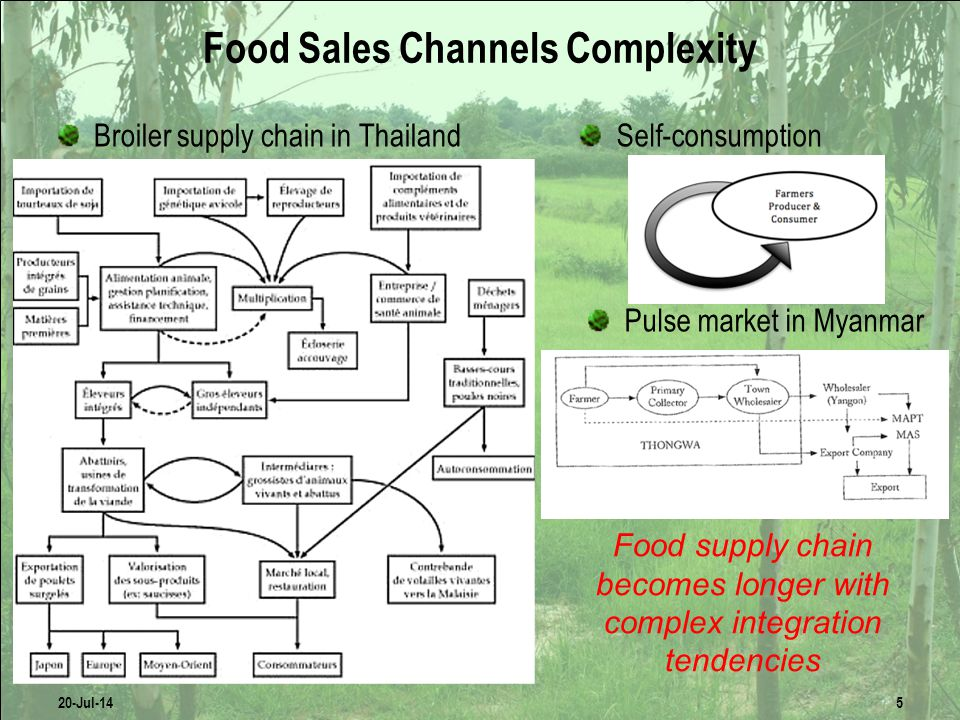 Food Sales Channels Complexity Broiler supply chain in ThailandSelf-consumption Pulse market in Myanmar 20-Jul-145 Food supply chain becomes longer with complex integration tendencies