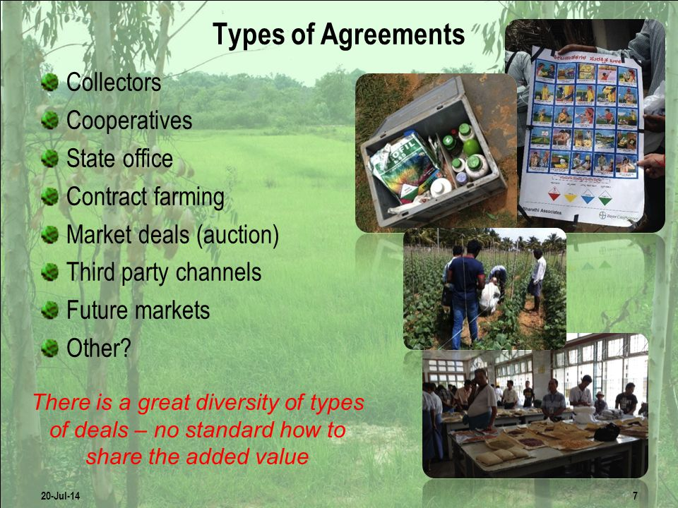 Transnational Companies Agro industries  Seeds  Fertilizers & feed Plantation Food processing  First transformation  Second transformation Retailers  Restaurants  Hypermarkets  Etc.