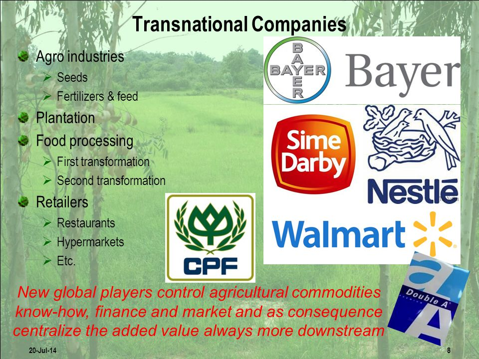 Transnational Companies Agro industries  Seeds  Fertilizers & feed Plantation Food processing  First transformation  Second transformation Retailers  Restaurants  Hypermarkets  Etc.