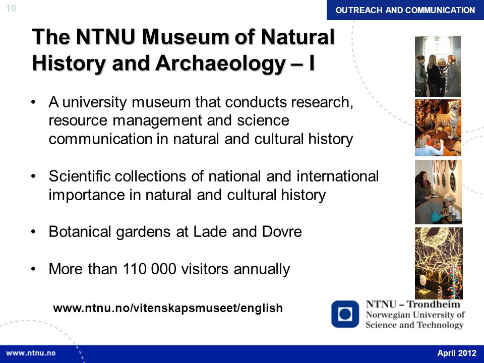10 The NTNU Museum of Natural History and Archaeology – I A university museum that conducts research, resource management and science communication in