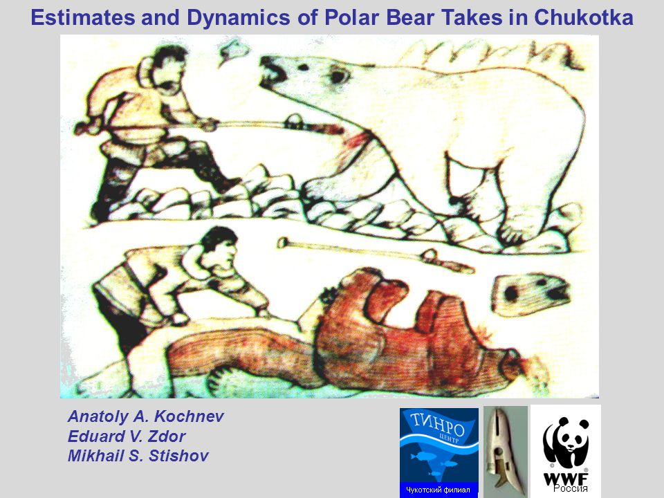Estimates and Dynamics of Polar Bear Takes in Chukotka Россия Аnatoly А.