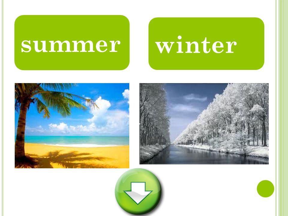 summer winter