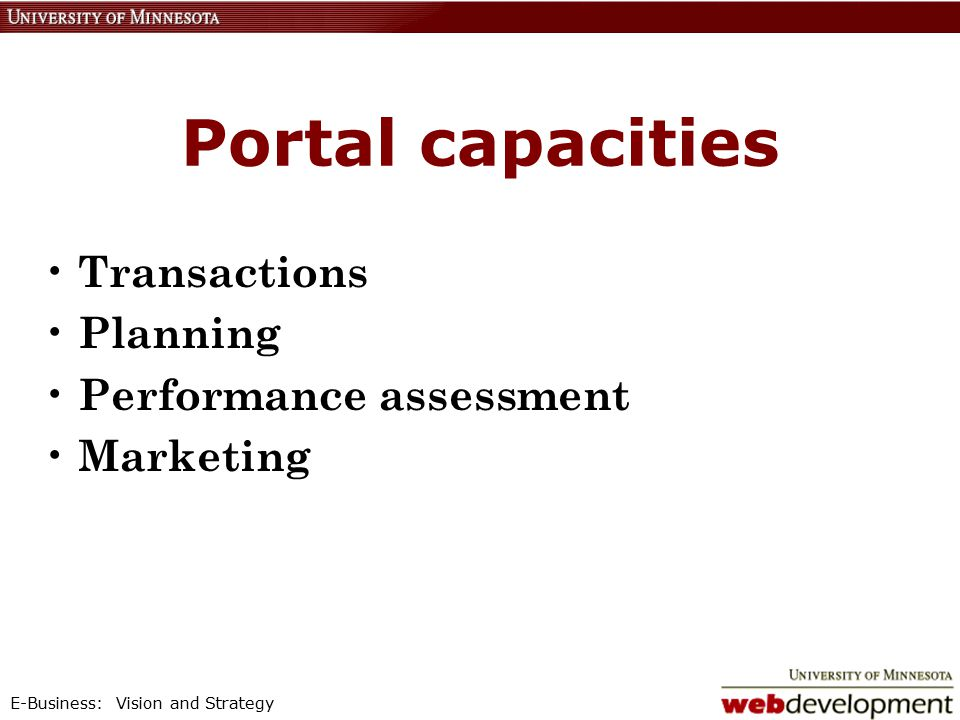 E-Business: Vision and Strategy Portal capacities Transactions Planning Performance assessment Marketing