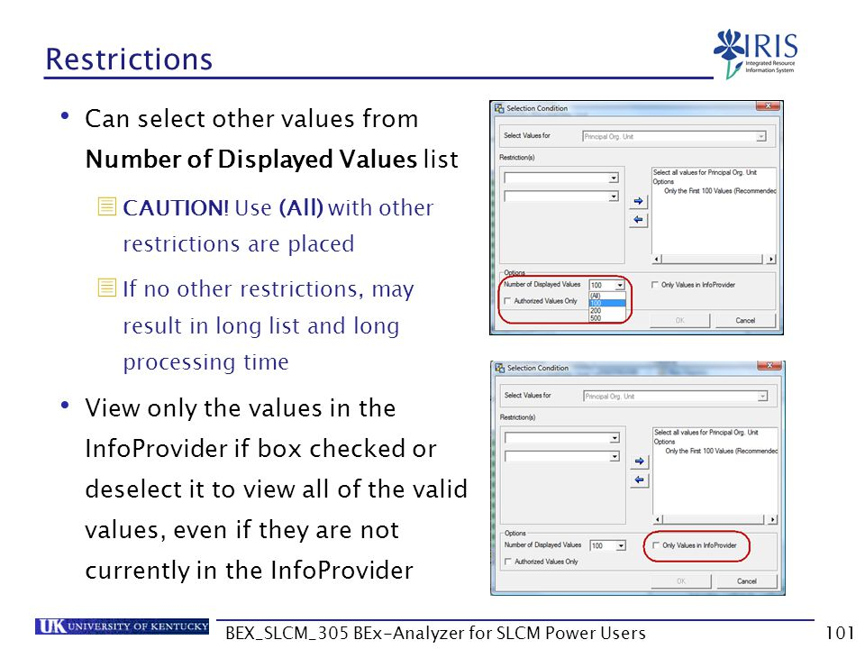 BEX_SLCM_305 BEx-Analyzer for SLCM Power Users101 Restrictions Can select other values from Number of Displayed Values list  CAUTION! Use (All) with