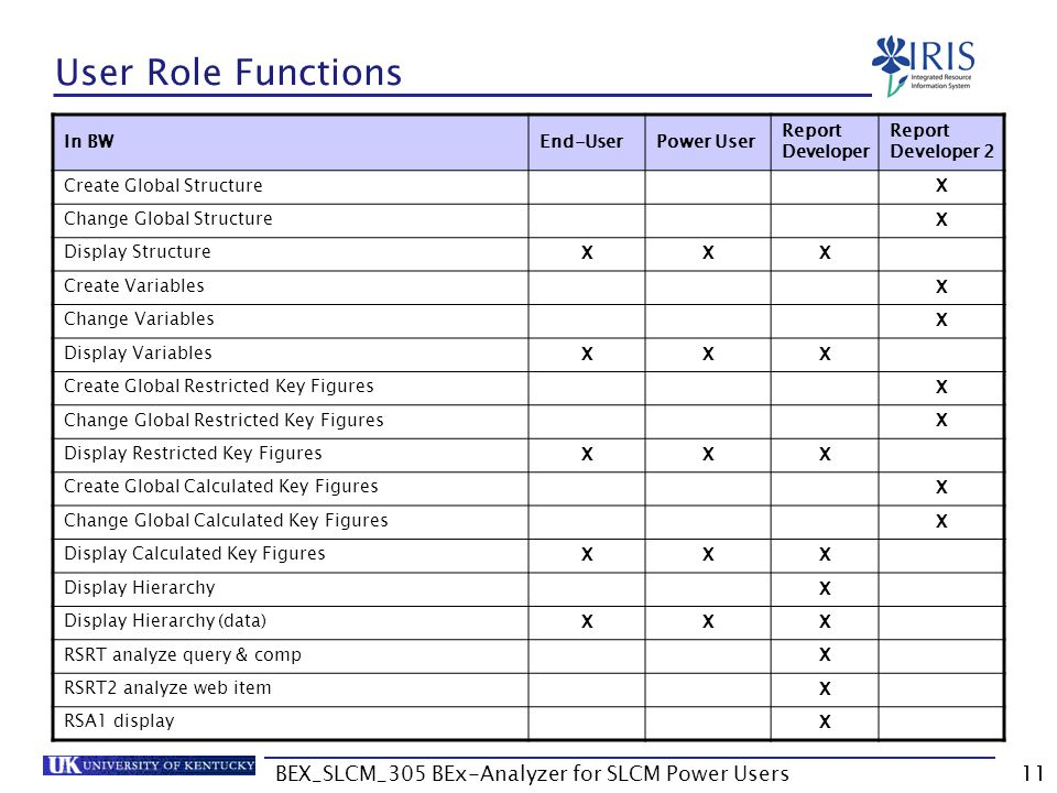 BEX_SLCM_305 BEx-Analyzer for SLCM Power Users11 User Role Functions In BWEnd-UserPower User Report Developer Report Developer 2 Create Global Structu