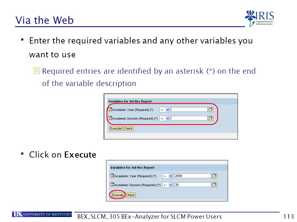 BEX_SLCM_305 BEx-Analyzer for SLCM Power Users113 Via the Web Enter the required variables and any other variables you want to use  Required entries