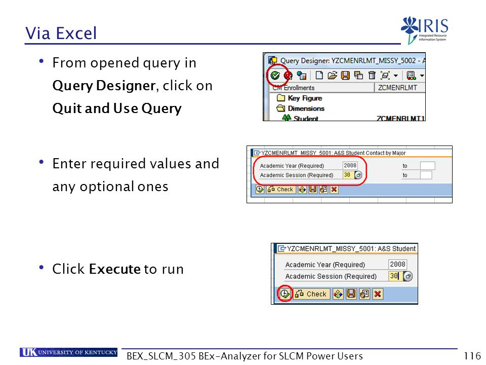 BEX_SLCM_305 BEx-Analyzer for SLCM Power Users116 Via Excel From opened query in Query Designer, click on Quit and Use Query Enter required values and