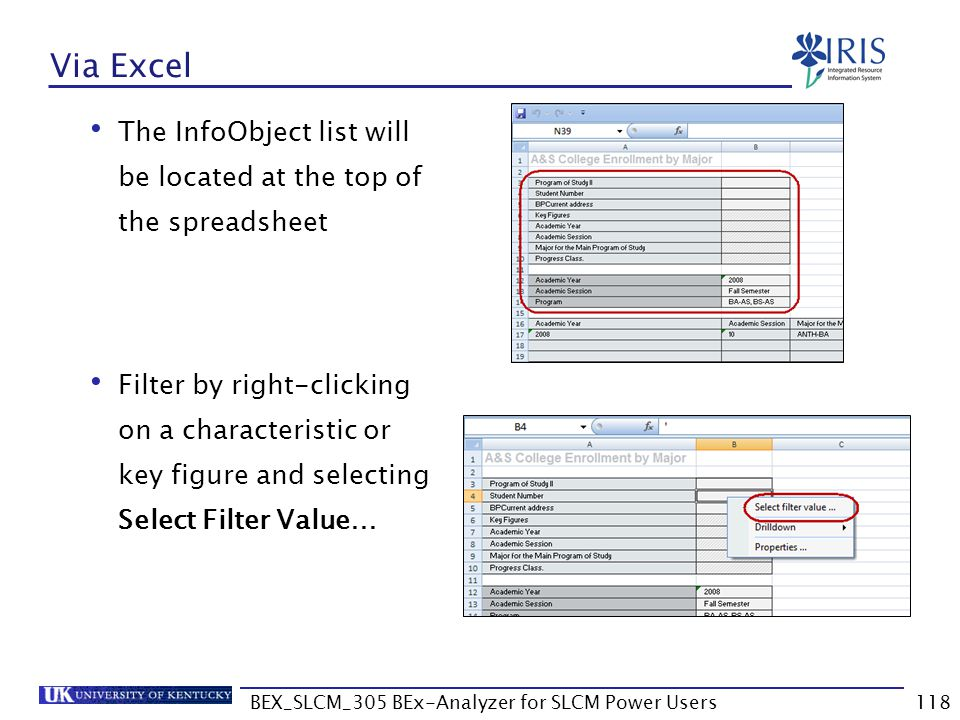 BEX_SLCM_305 BEx-Analyzer for SLCM Power Users118 Via Excel The InfoObject list will be located at the top of the spreadsheet Filter by right-clicking