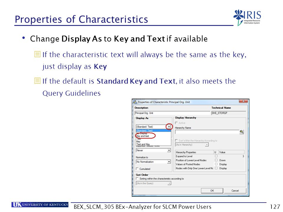 BEX_SLCM_305 BEx-Analyzer for SLCM Power Users127 Properties of Characteristics Change Display As to Key and Text if available  If the characteristic