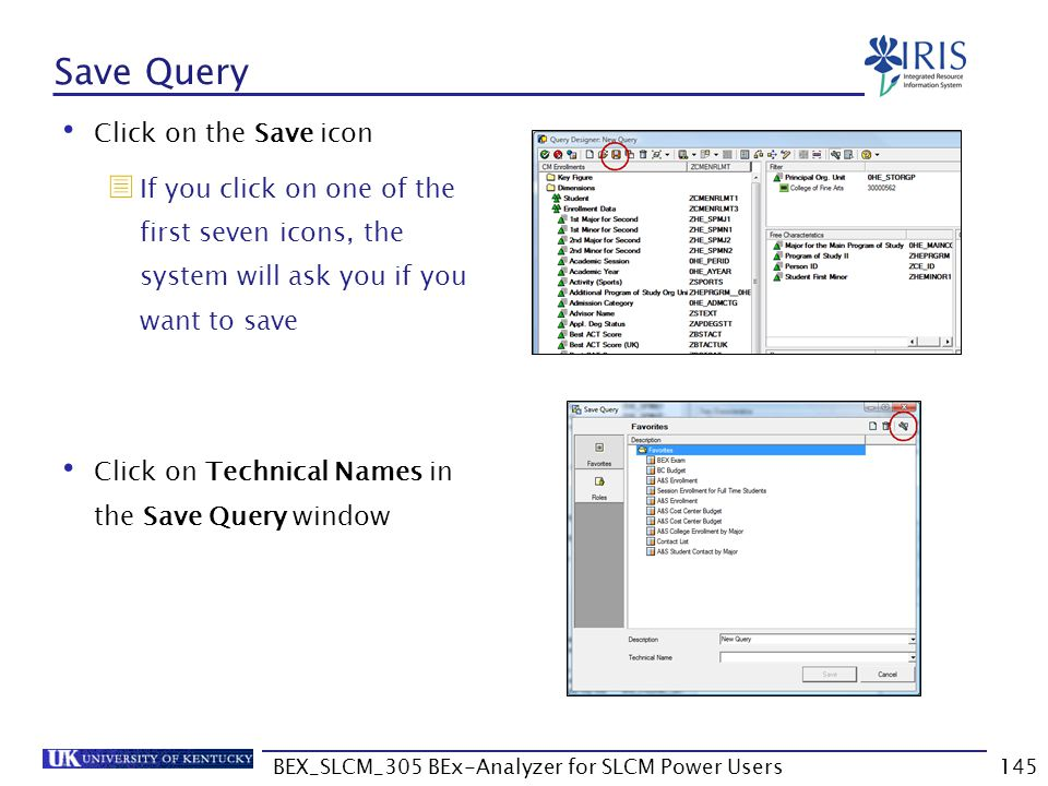 BEX_SLCM_305 BEx-Analyzer for SLCM Power Users145 Save Query Click on the Save icon  If you click on one of the first seven icons, the system will as