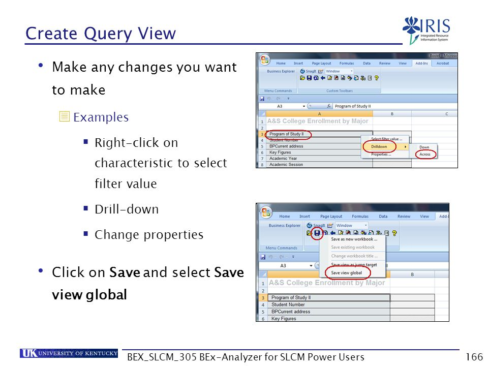 BEX_SLCM_305 BEx-Analyzer for SLCM Power Users166 Create Query View Make any changes you want to make  Examples  Right-click on characteristic to se