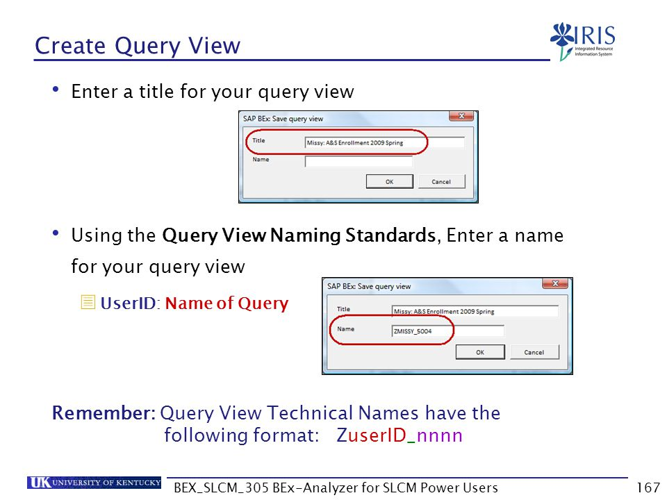 BEX_SLCM_305 BEx-Analyzer for SLCM Power Users167 Create Query View Enter a title for your query view Using the Query View Naming Standards, Enter a n
