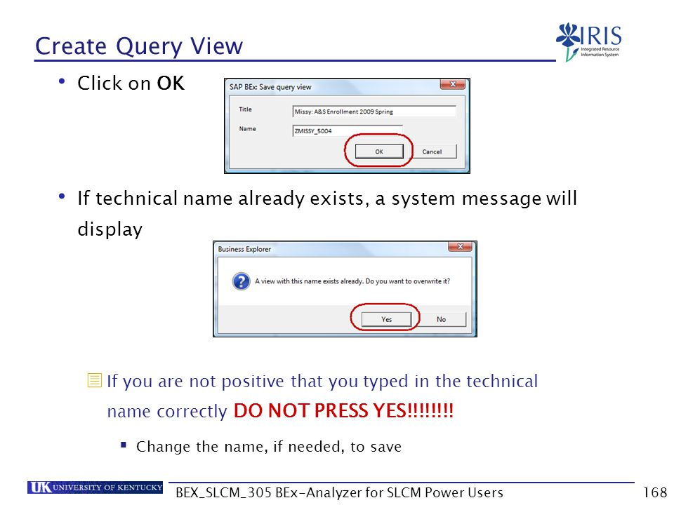 BEX_SLCM_305 BEx-Analyzer for SLCM Power Users168 Create Query View Click on OK If technical name already exists, a system message will display  If y