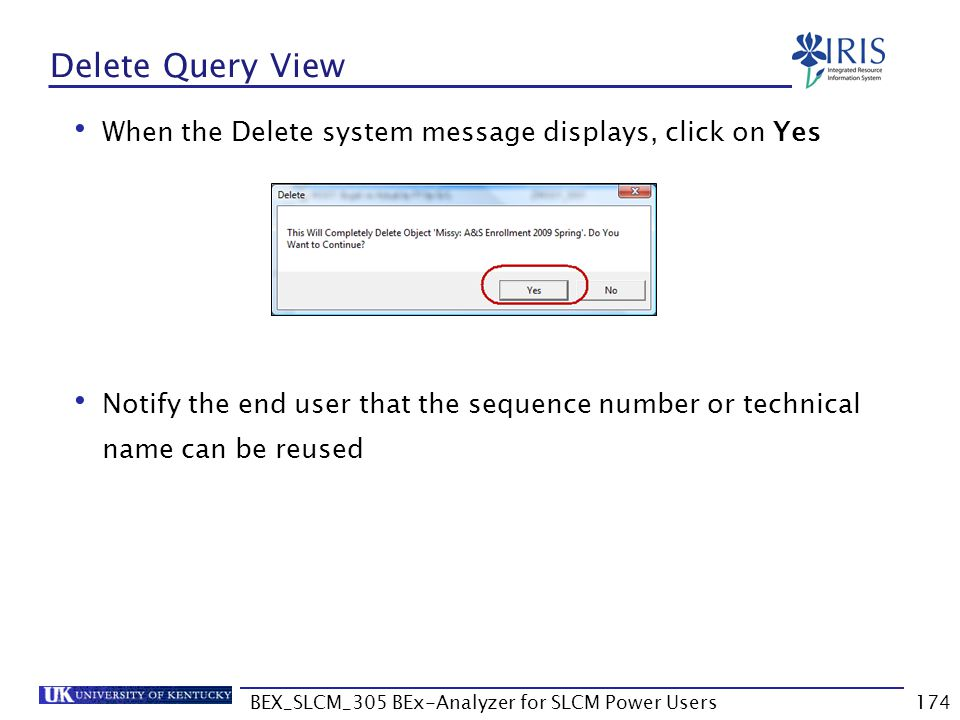 BEX_SLCM_305 BEx-Analyzer for SLCM Power Users174 Delete Query View When the Delete system message displays, click on Yes Notify the end user that the