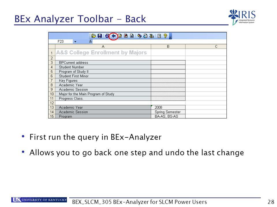 BEX_SLCM_305 BEx-Analyzer for SLCM Power Users28 BEx Analyzer Toolbar - Back First run the query in BEx-Analyzer Allows you to go back one step and un
