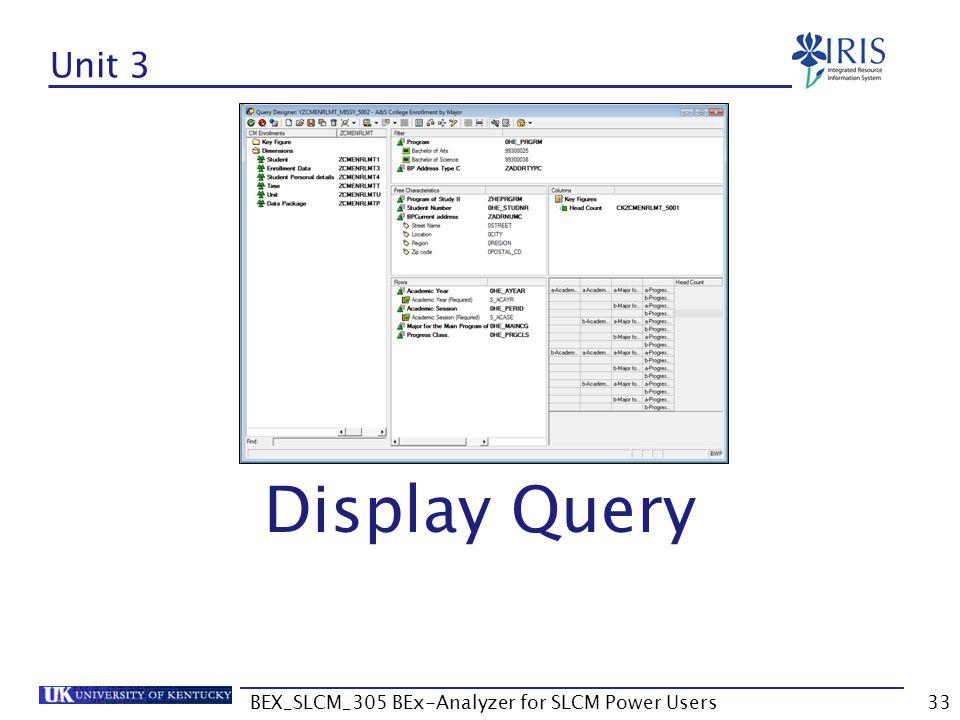 BEX_SLCM_305 BEx-Analyzer for SLCM Power Users33 Unit 3 Display Query