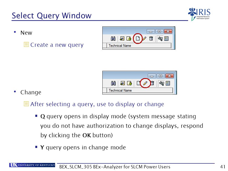 BEX_SLCM_305 BEx-Analyzer for SLCM Power Users41 Select Query Window New  Create a new query Change  After selecting a query, use to display or chan