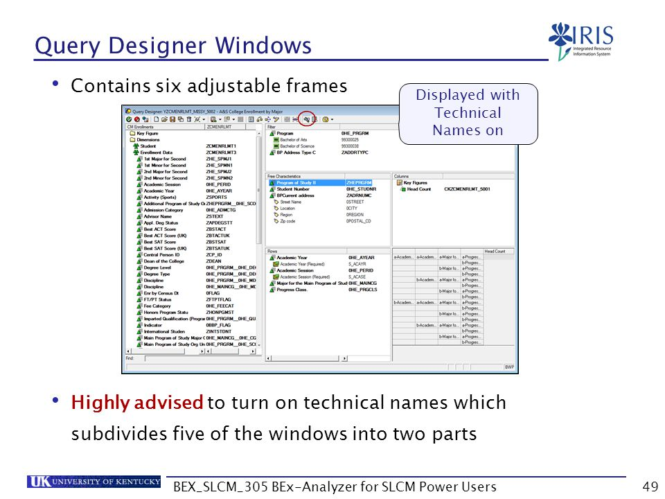Contains six adjustable frames Highly advised to turn on technical names which subdivides five of the windows into two parts BEX_SLCM_305 BEx-Analyzer