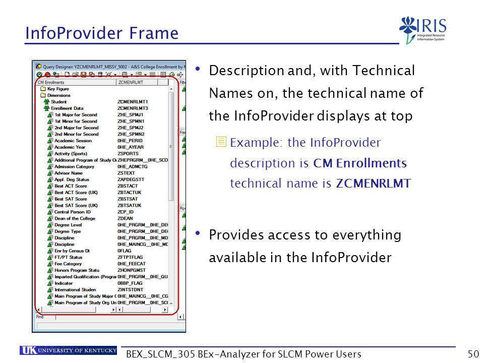 BEX_SLCM_305 BEx-Analyzer for SLCM Power Users50 InfoProvider Frame Description and, with Technical Names on, the technical name of the InfoProvider d