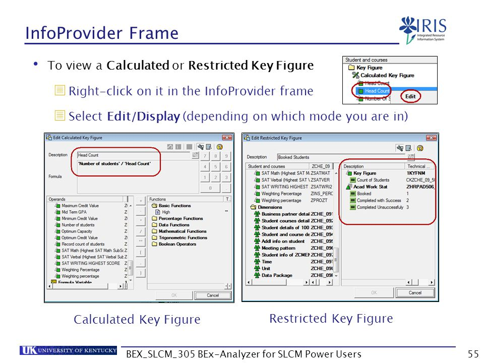 BEX_SLCM_305 BEx-Analyzer for SLCM Power Users55 InfoProvider Frame To view a Calculated or Restricted Key Figure  Right-click on it in the InfoProvi