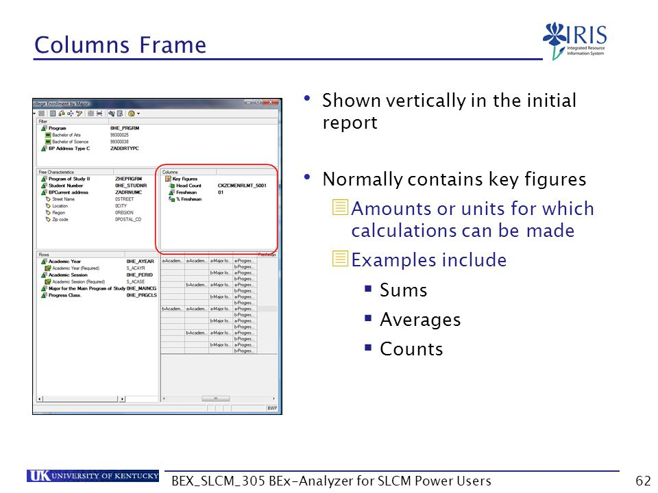 BEX_SLCM_305 BEx-Analyzer for SLCM Power Users62 Columns Frame Shown vertically in the initial report Normally contains key figures  Amounts or units