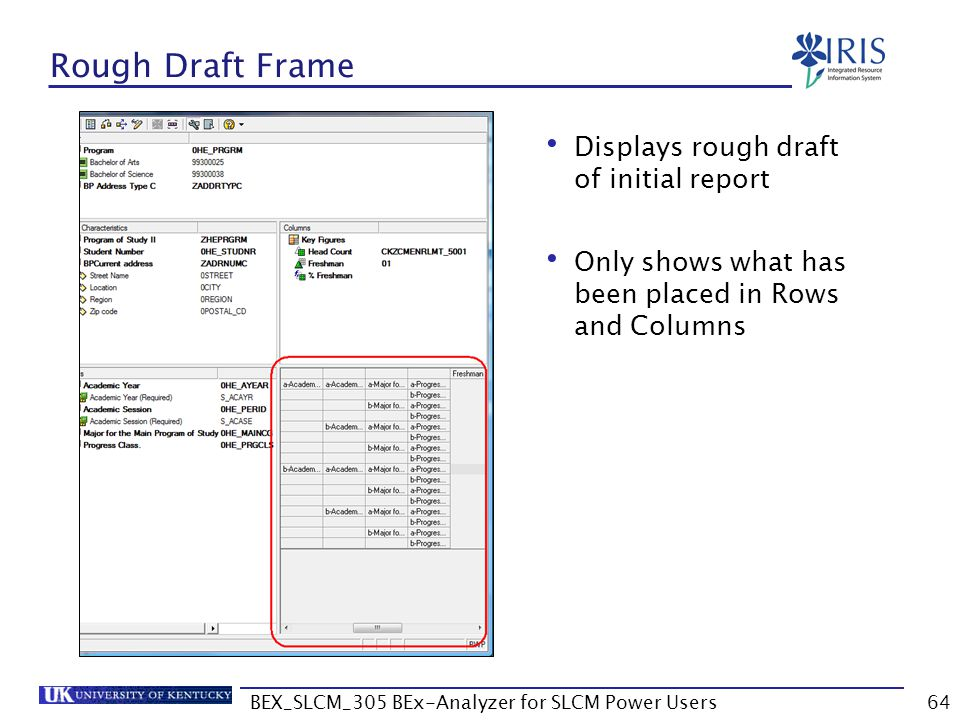 BEX_SLCM_305 BEx-Analyzer for SLCM Power Users64 Rough Draft Frame Displays rough draft of initial report Only shows what has been placed in Rows and