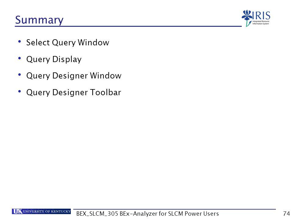 BEX_SLCM_305 BEx-Analyzer for SLCM Power Users74 Summary Select Query Window Query Display Query Designer Window Query Designer Toolbar