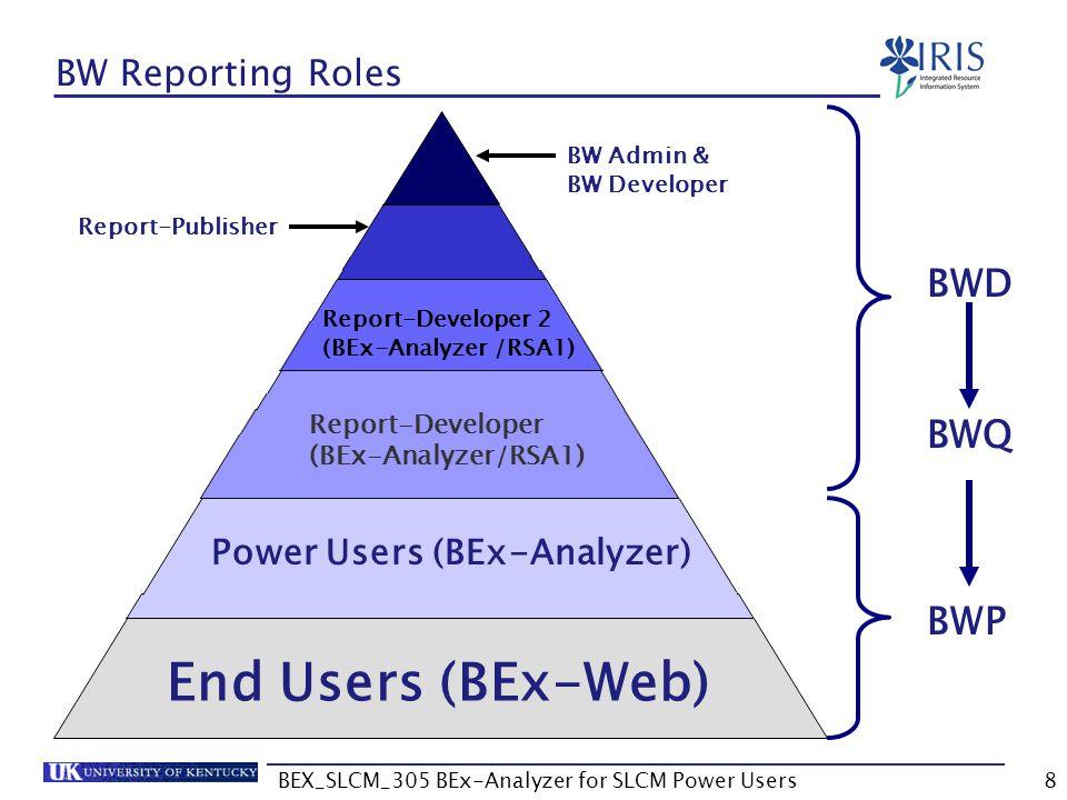 BEX_SLCM_305 BEx-Analyzer for SLCM Power Users8 BW Reporting Roles End Users (BEx-Web) Power Users (BEx-Analyzer) Report-Developer 2 (BEx-Analyzer /RS