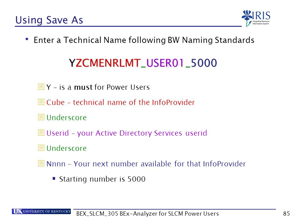BEX_SLCM_305 BEx-Analyzer for SLCM Power Users85 Using Save As Enter a Technical Name following BW Naming Standards  Y – is a must for Power Users 