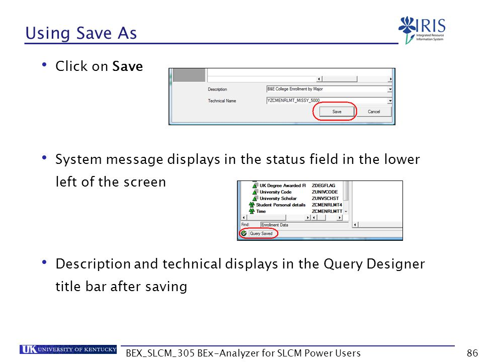 BEX_SLCM_305 BEx-Analyzer for SLCM Power Users86 Using Save As Click on Save System message displays in the status field in the lower left of the scre