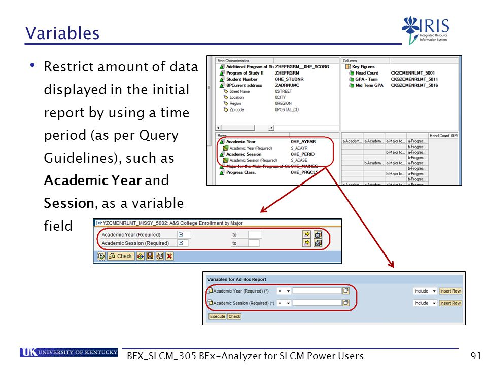 BEX_SLCM_305 BEx-Analyzer for SLCM Power Users91 Variables Restrict amount of data displayed in the initial report by using a time period (as per Quer